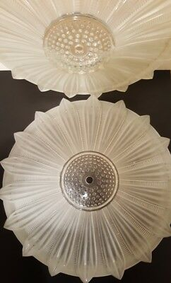2 frosted glass SUNFLOWER  & 1 Ceiling FIXTURE  CHANDELIERS 1940s Art Deco