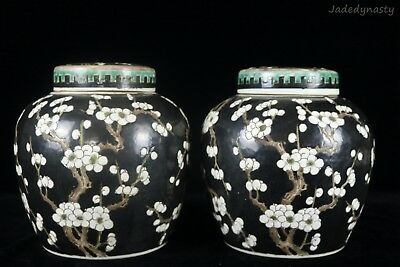 A Pair Chinese Beautiful Famille Rose Porcelain Wintersweet Tea Caddies