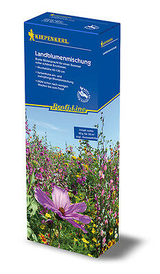 """KIEPENKERL - Flower Mixture for 50m ² """" Country Floral Mix """" blüht to for Frost"""