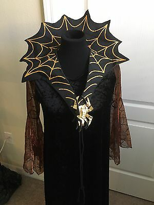 Adult Spider Witch Halloween Costume Size S/M
