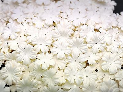 50 White Color Carnation Flowers Mulberry Paper for Craft & D.I.Y. Scrapbook