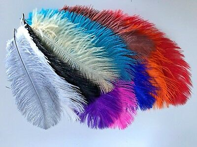 5pcs Ostrich Feather 20-25cm 15 Colour Choice DIY Craft Wedding Party Decoration