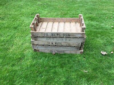 Wooden vintage garden trays tray apple boxes chic old chitting farm crates x5