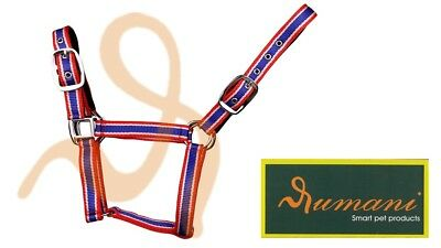 Rumani PP Padded Horse Halter / Headstall With Solid Iron Hardware