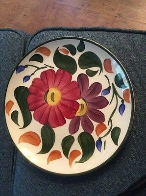 Vintage retro hand painted Wade Flower plate Wade Plate 9.5 Inches