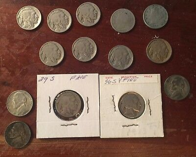 Coin Collection of Liberty, Buffalo and Jefferson War Nickels