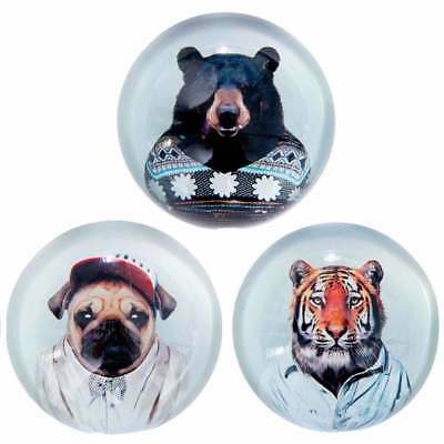 NEW Zoo portraits paperweights (various styles) by The Design Gift Shop