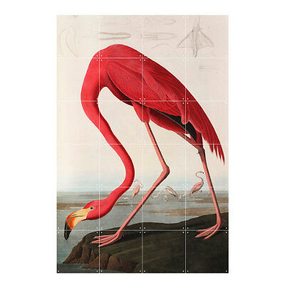 NEW IXXI flamingo audubon wall art (multiple sizes) by Until