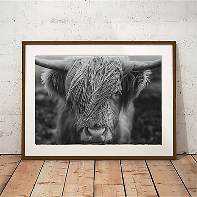 NEW Highland Cow Black and White Print Women's by BespokeMoments