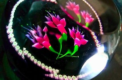 Caithness Fuschias Limited Edition Scottish Glass Paper Weight