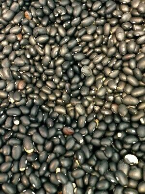 Black Turtle Beans (FREE SHIPPING)