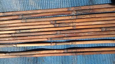 Rare Polynesia Indian Tribe Ceremony  Bow And 12 Arrows Set
