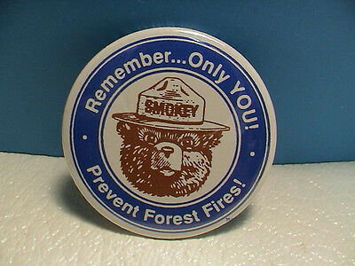Smokey Bear Remember Only You! Prevent Forest Fires Park Service Blue/white Pin