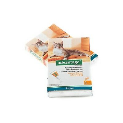 ADVANTAGE 40 Gatos 4 Pipetas (- 4 kg)