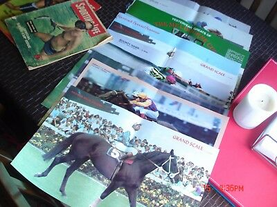 2 sporting life mags and 15 racetrack magazines posters