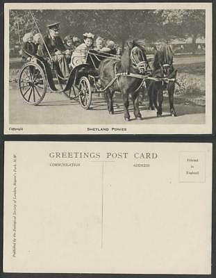 Shetland Ponies Horses Girls on Pony Horse Carriage Cart London Zoo Old Postcard