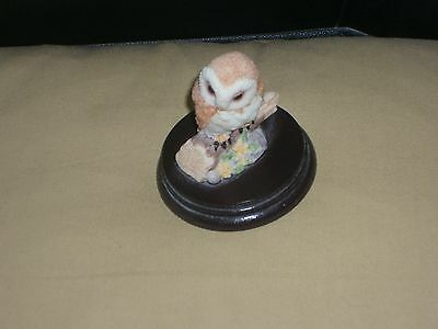 Barn Owl By Regency Perfect