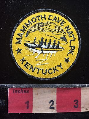 Vtg MAMMOTH CAVE NATIONAL PARK Kentucky Patch 73C4
