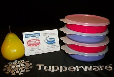 Tupperware 4 Munch Kids Eco Stages Divided Dish Plate #2552 ~RED PURPLE ~SHEER