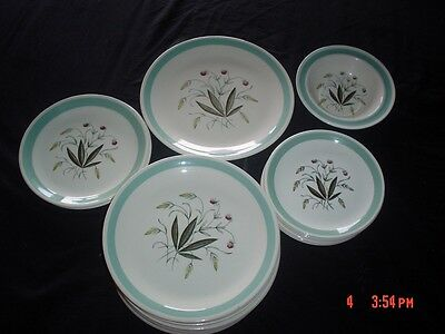 Alfred Meakin Crown Goldendale HEDGEROW Part Dinner Set