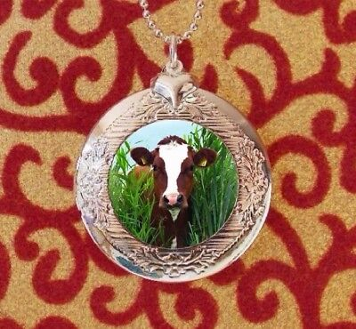 Sweet Cow in the Meadow, Silver Bubble Charm Photo Locket Necklace USA