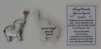m Never forget loved ALWAYS REMEMBER YOU ARE SPECIAL Elephant Pocket token charm