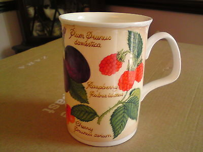 "fine Bone China Roy Kirkham ""Parchment Fruit"" Mug 2000, VGC, FREE-MAILING."