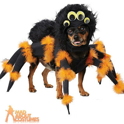 Pet Dog Spider Pup Costume Funny Eight Legged Halloween Fancy Dress Outfit New