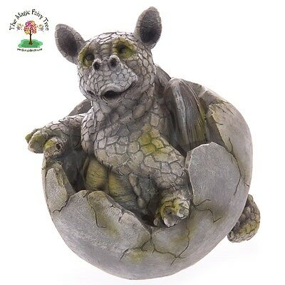Large statue of a baby dragon hatching from egg figurine dragons