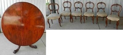 Centre Dining Table Victorian Mahogany Drum Edge + 6 Balloon Back Chairs 1870's