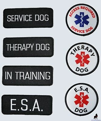 ALL ACCESS CANINE™ Support Animal ESA Dog - Service Dog - Therapy Dog Patches
