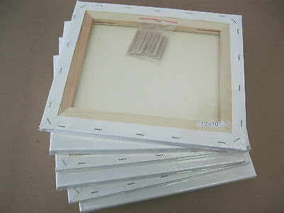 Lot of 6 pcs Primed Artist Pre-Stretched Canvas 10x12""