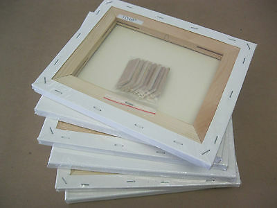 6 pcs Artist Pre-Stretched Canvas 8 x 10""