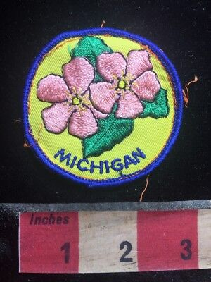 Vtg Michigan Pink Flowers Patch 76Y