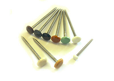 Poly Top CLADDING PINS Nails UPVC/Fascia/Soffit Roof Plastic