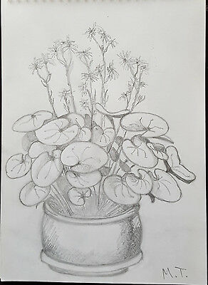 Original Ukrainian Realism Flowers Floral Still Life Painting Drawing Pencil