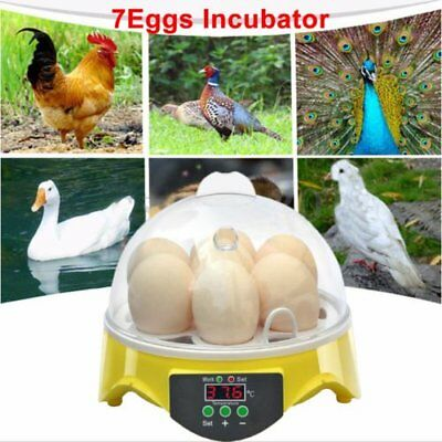Unique Automatic 7 Eggs Turning Incubator Chicken Hatcher Temperature Control DS