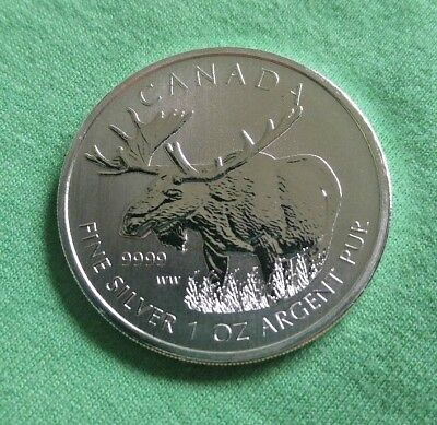 2013 Canada 1 oz Silver Wildlife Series Moose Canadian mint BU - from tube