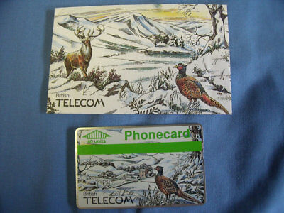 Unused BT Phonecard, 40 Units, in Winter / Pheasant / Stag Gift Envelope.