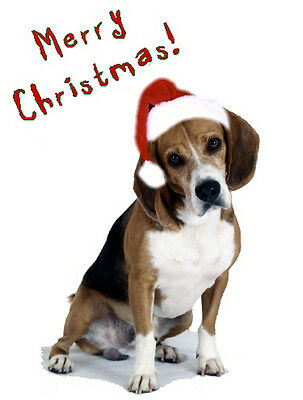 Pet Christmas Cards:Dog Beagle Xmas