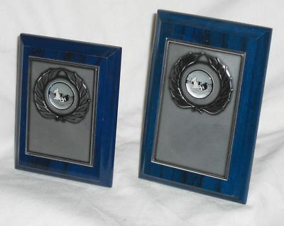 Set Of 2 Swimming Plaques With Silver Chrome Fronts, Engraved Free