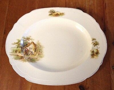 Alfred Meakin Serving Pattern Oval Platter