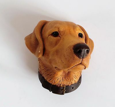 Vintage Bossons Dogs Head – Labrador (1968)