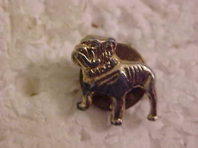 Bull Dog Lapel Pin