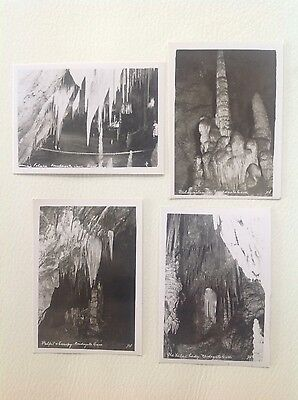 Vintage Photographs - Newdegate Caves, Hastings x 4