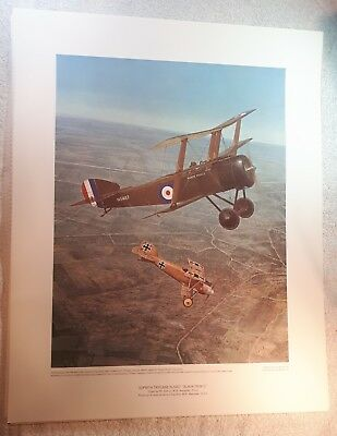 "Vintage Aviation Art R.W. Bradford WWI Sopwith Triplane Fokker Eindecker 16""x20"""