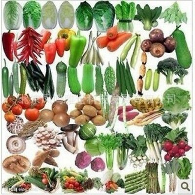 50PCS Seed Seeds Mix Balcony Vegetables Package Organic Vegetable Onion Lettuce