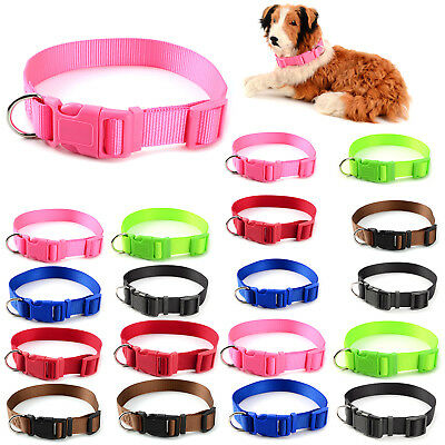 Collier Chien Chat Reglable Nylon Clip Sangle Animaux Multicolore et taille