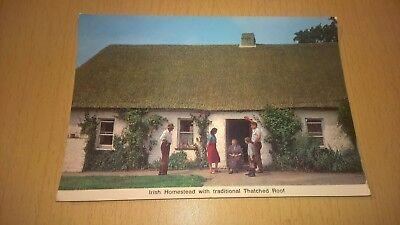 Old Irish Postcard - Irish Homestead With Traditional Thatched Roof - Ireland