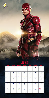 Justice League Official Calendar 2018